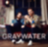 GraywaterCouchPNG a.jpg