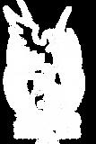JayBird tee shirt and merch design USE W
