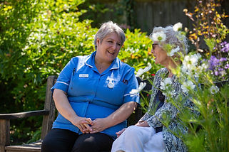 Rose nurse and hazel in garden.jpg
