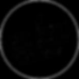 basson laubscher logo (2).png