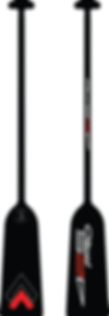 DRAGON_BOAT_PADDLE_modifié.png