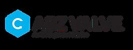 asc_ABZ Valve_rgb_logo-01.png