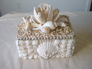 Magnolia Shell Box