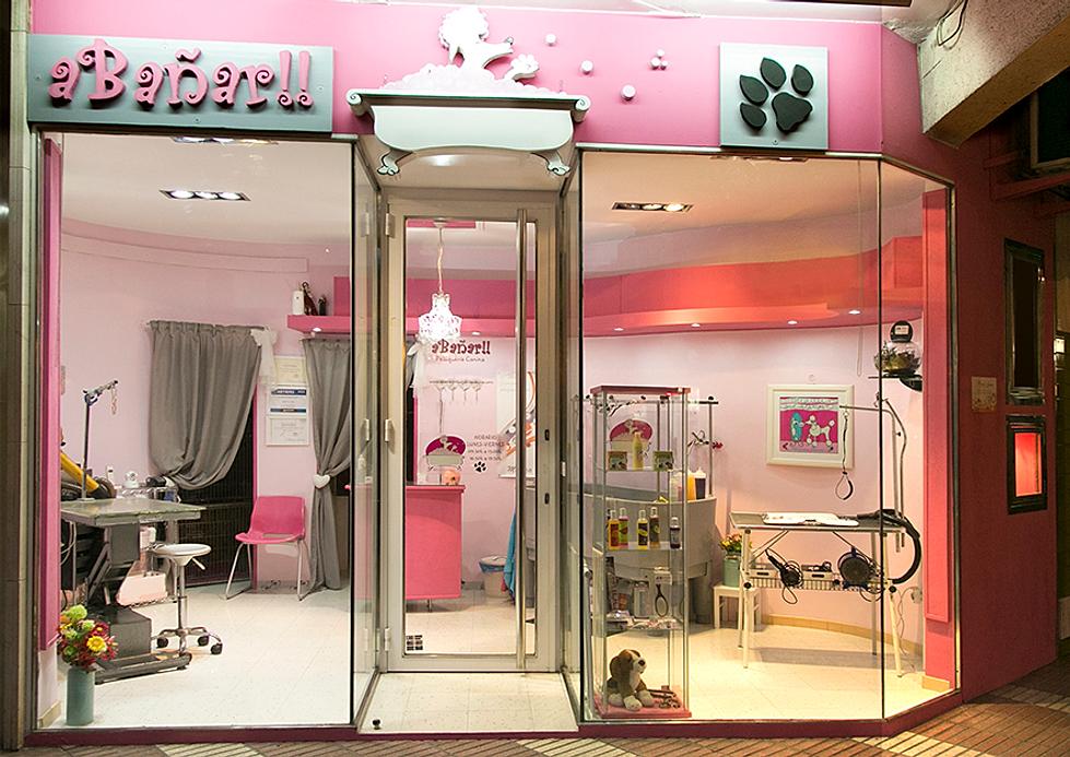 Peluqueria Canina en Zaragoza aBañar baño y corte de pelo para