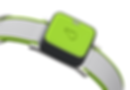 1.-Whistle-Go-Explore-GPS-Dog-Tracker-4.