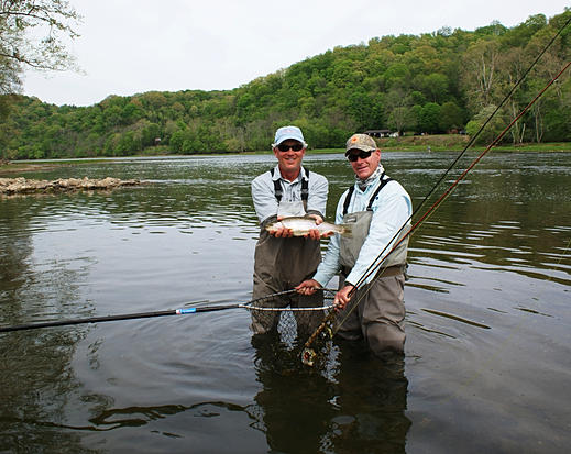 Holston river fishing report tennessee for Tennessee fishing report