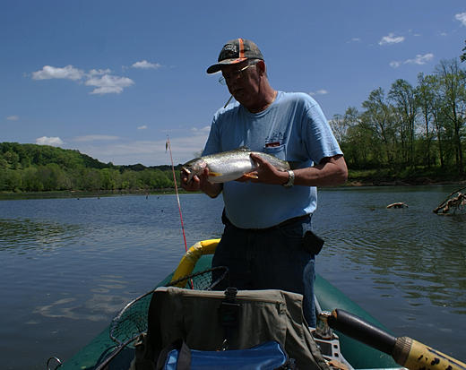 Holston river fishing report tn for Tennessee fishing report