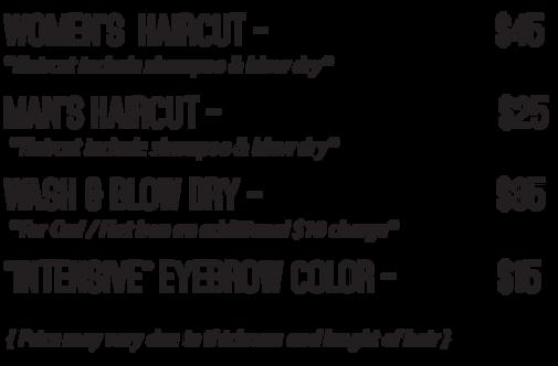 Vernon hills hair salon hair by tatiana salon local hair service vernon hills haircut service price winobraniefo Choice Image