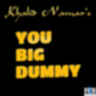 You Big Dummy cover.jpg