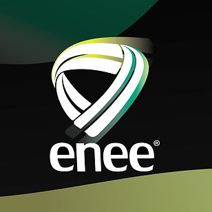 ENEE20 IG3 2JAN Logo.jpg