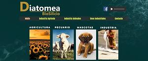 Diatomea.png
