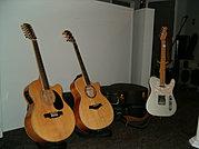 Scott's Guitars