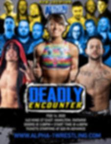 deadlyenouncter-Poster.jpg