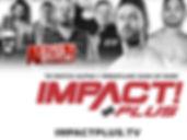 impactplus-4.jpg