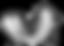 Pluma 7 base,fondo transparente normal e