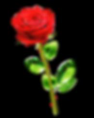 Rosa Roja Final Fondo transparente.png