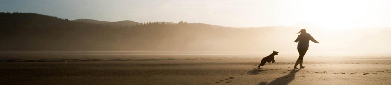 beach crop 2.jpg