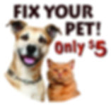 Dog-Cat Icon 1.jpg