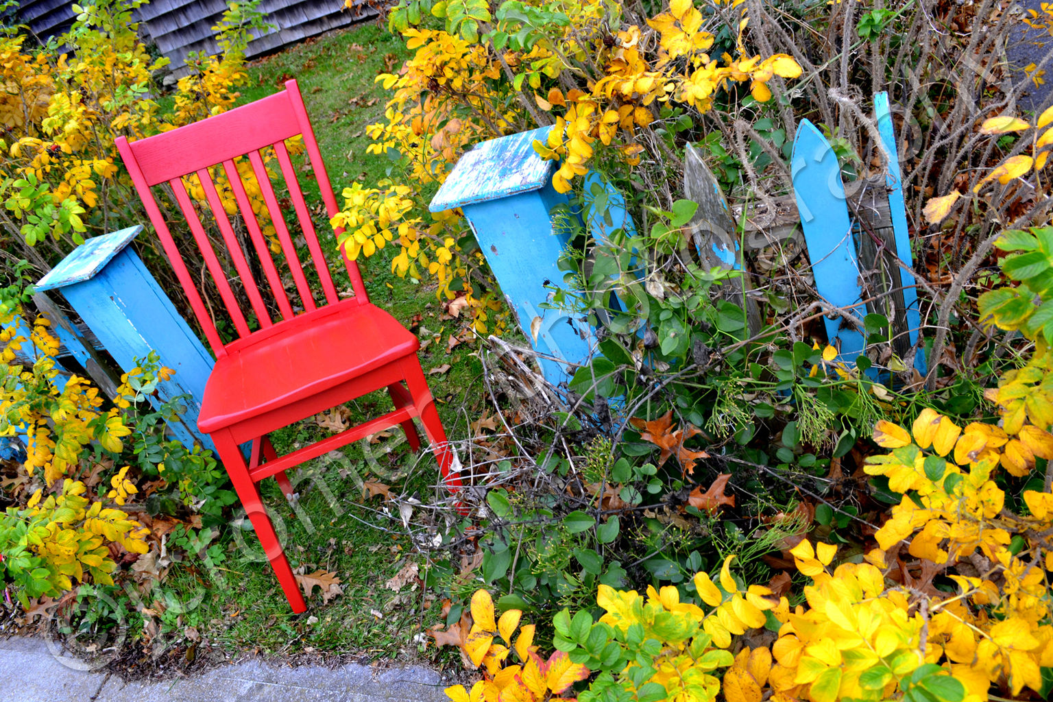 red chair in the fall