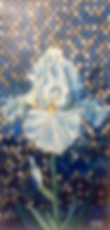 White Iris (1).jpg