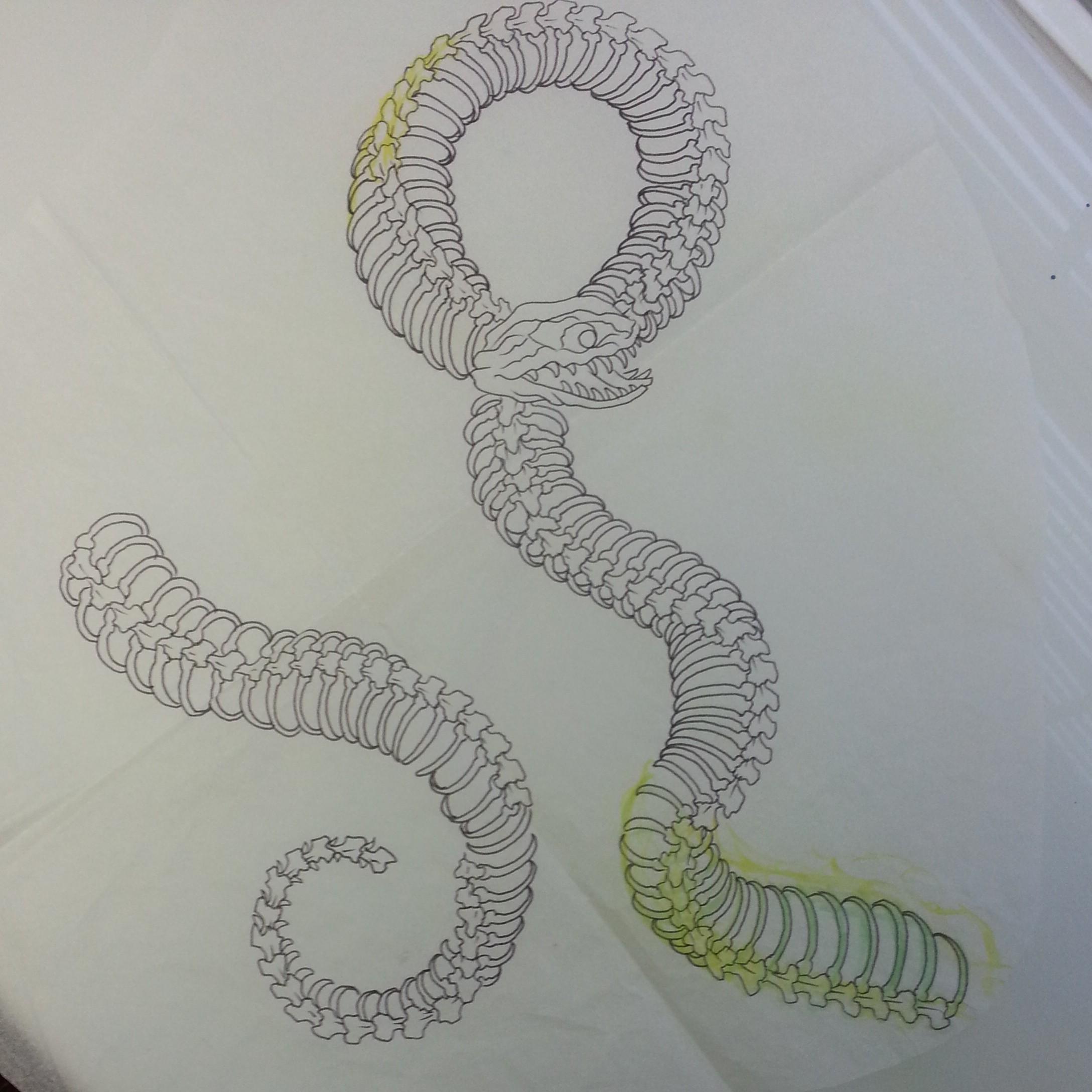 Tabernacle Tattoo Tampa Snake Bone Anatomy Sketch