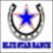 blue star ranch square logo.jpeg