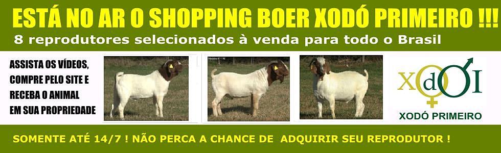 Shopping Boer Xodó Primeiro