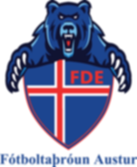 FDE Logo (Clear) (PNG) No Outline.png