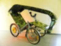 Электротрицикл Carlectus