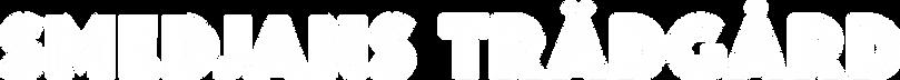ST_logo2vit.png