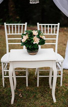 Gold Coast Wedding Hire Homepage Brisbane Wedding Byron Bay Wedding