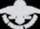 The Frame Theory Logo-cj.png