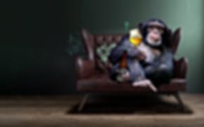 Tripel Monkey achtergrond.png