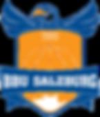 BBU-Falcons-Logo-PNG.png
