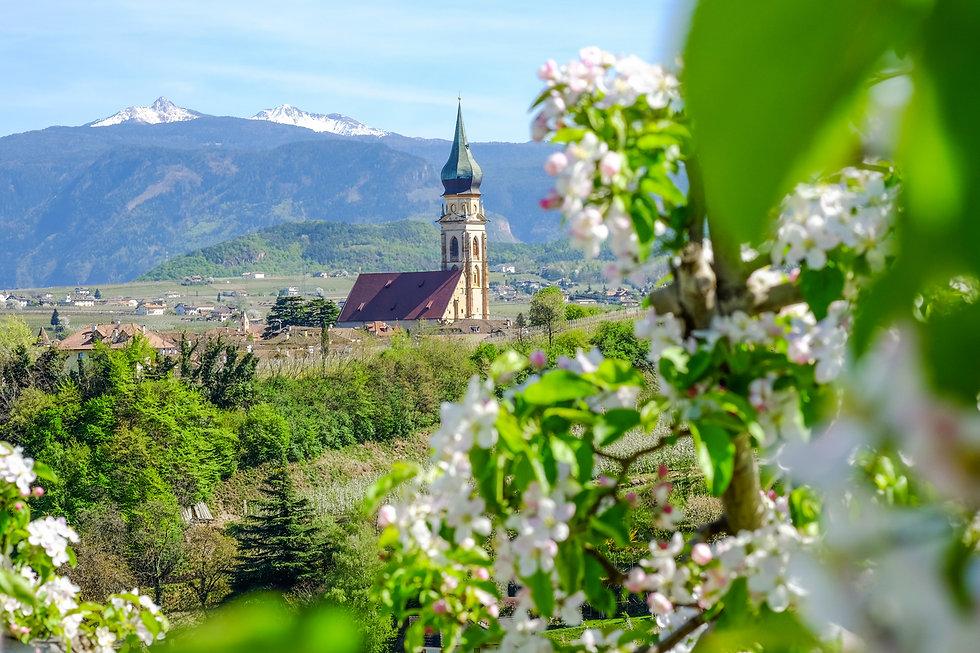 Frühling3_c_MarionLafogler-Tourismusve