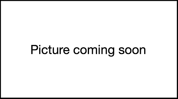 Picture coming soon .png
