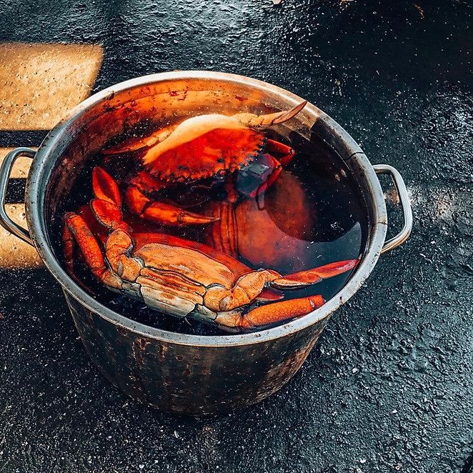 HCO Crabs