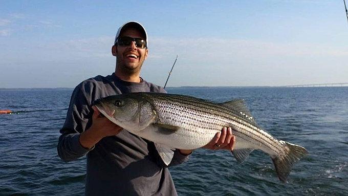 Prime time charters chesapeake bay charter fishing guide for Chesapeake bay striper fishing