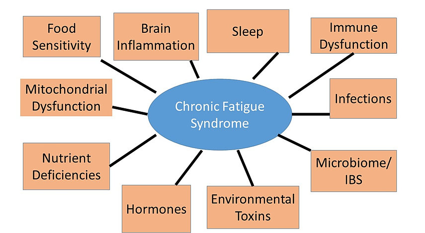 chronic fatigue syndrome dating site Stylist dating fatigue - find single woman in the us with rapport looking for novel in all the wrong places now, try the right place men looking for a woman - women looking for a woman if you are a middle-aged woman looking to have a good time dating woman half your age, this article is for you.
