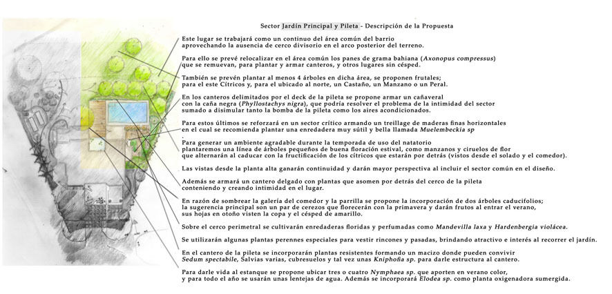Ignacio montes de oca paisajista for Jardin 700m2