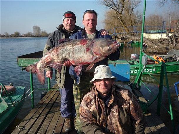 астраханская рыбалка база отдыха