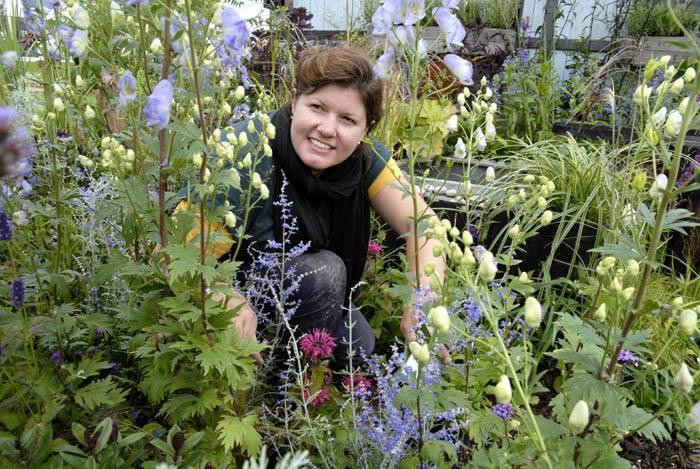 Juniper House Garden Design : Jeni cairns juniper house garden design peterborough