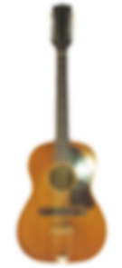 12 string.png