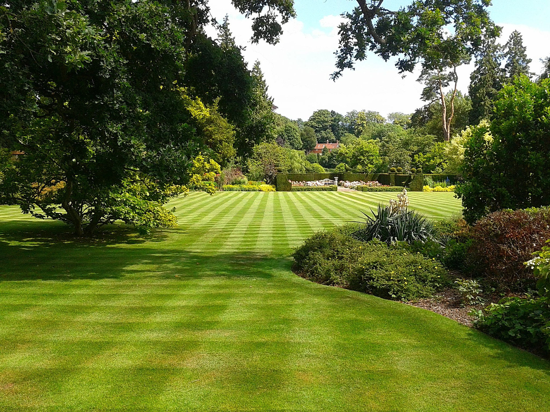 Garden service gardener regular garden maintenance for Garden maintenance london