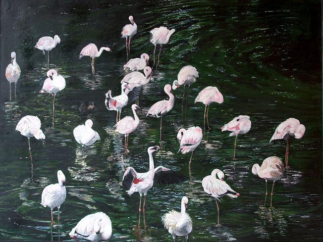 9. Pink Flamingoes.jpg