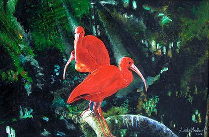 10. Scarlet Ibis.jpg
