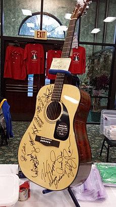 CIS 2014 guitar