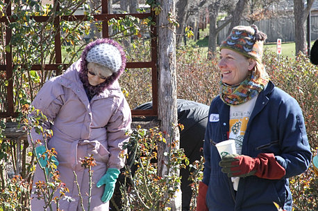 Pruning Clinic