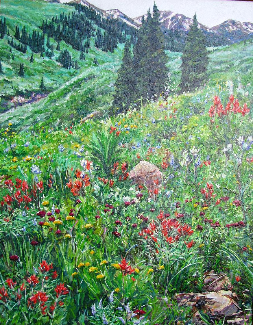 mighty spark studio dr denise crute west maroon wildflowers