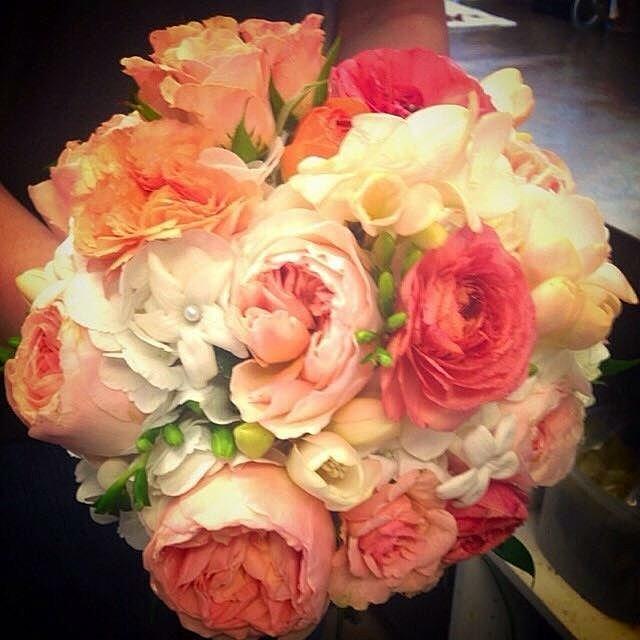 Coral Garden Rose weddingsite | garden roses!